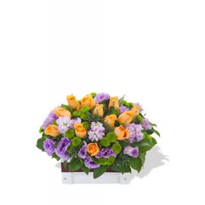 Orange Rose and Matthiola Arrangement