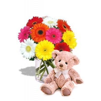 Gerbera Bouquet with Teddy