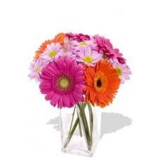9pcs Mixed Gerbera and Chrysanthemum Vase Bouquet
