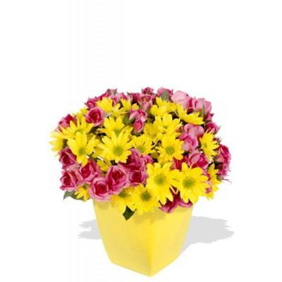 Spray Rose and Chrysanthemum Bouquet