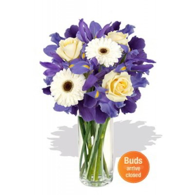 Mixed Bouquet ,2 Gerbera and 3 Rose Vase Bouquet